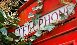 Telephone Box Mural